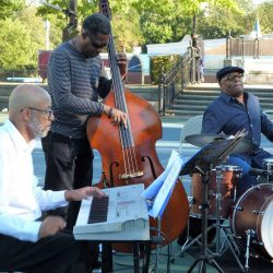 Musicians at Lincoln Park Festival